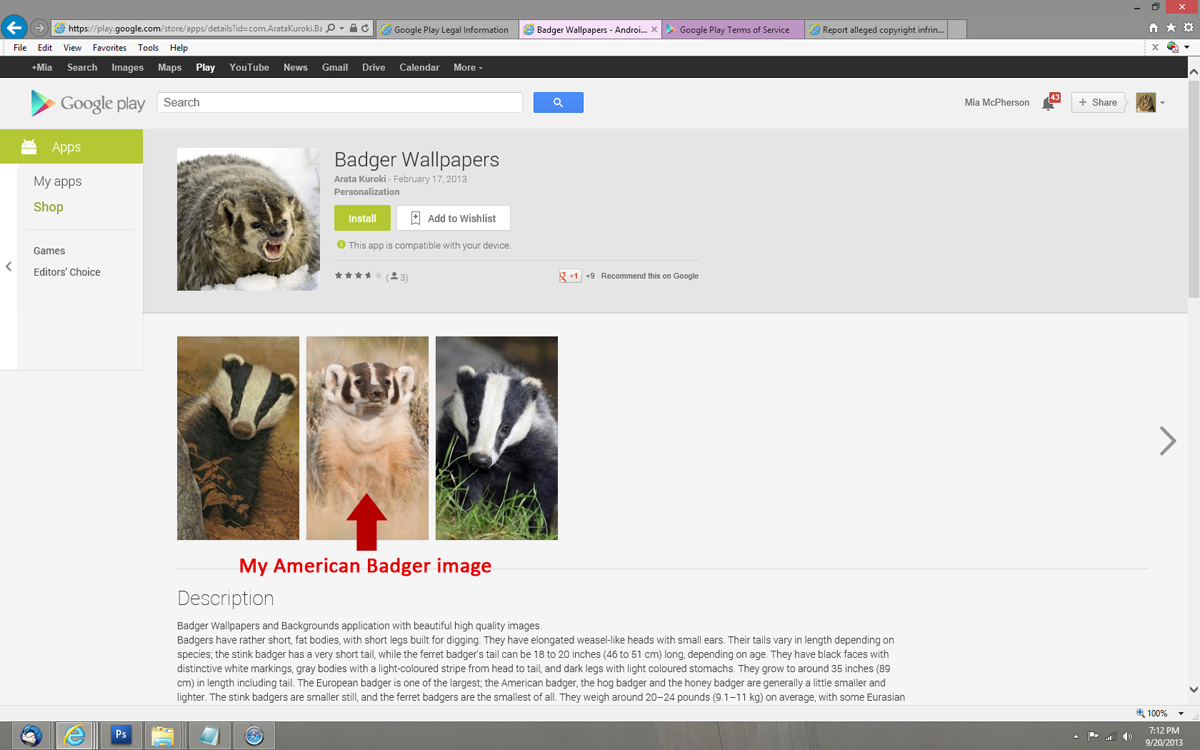 My Badger image was stolen and used in three Badger Wallpaper Apps on Google Play