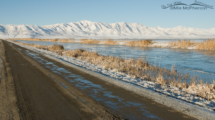 Bear River National Wildlife Refuge