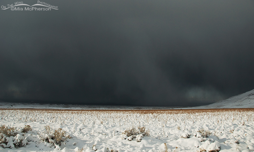 Snow Storm approaching Antelope Island