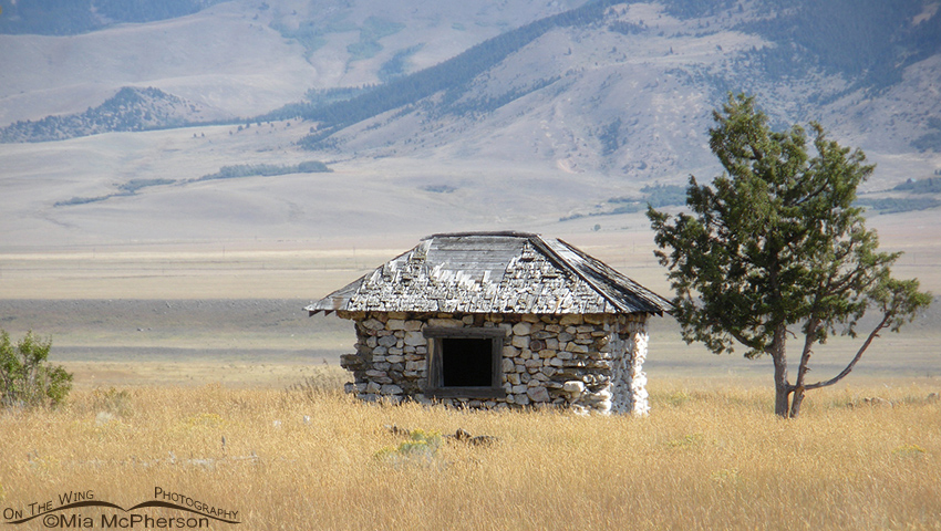 An old homestead in Madison County, Montana
