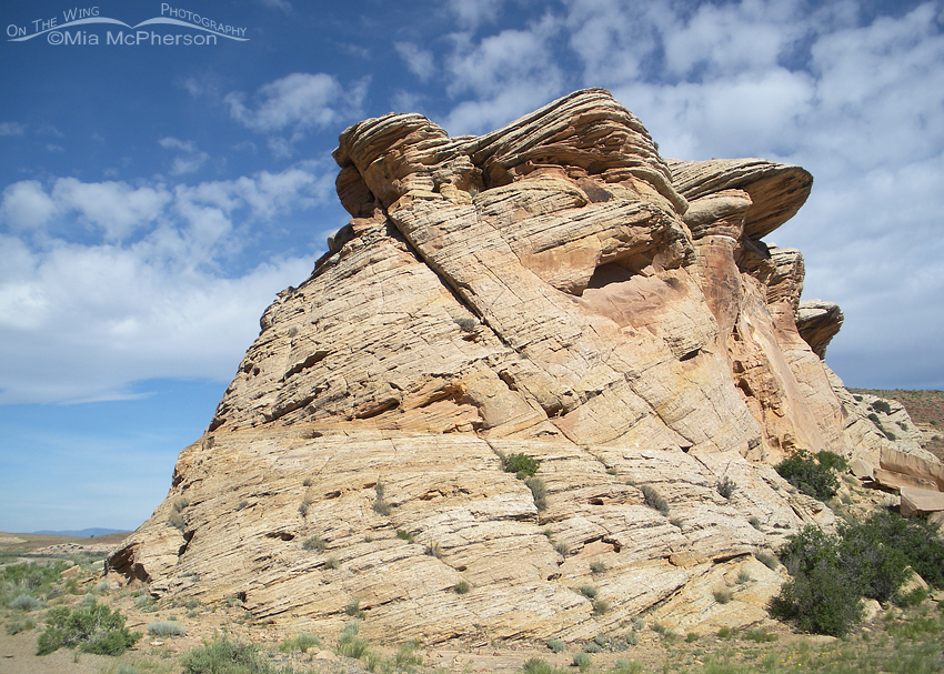 The San Rafael Swell Area has been sculpted by time