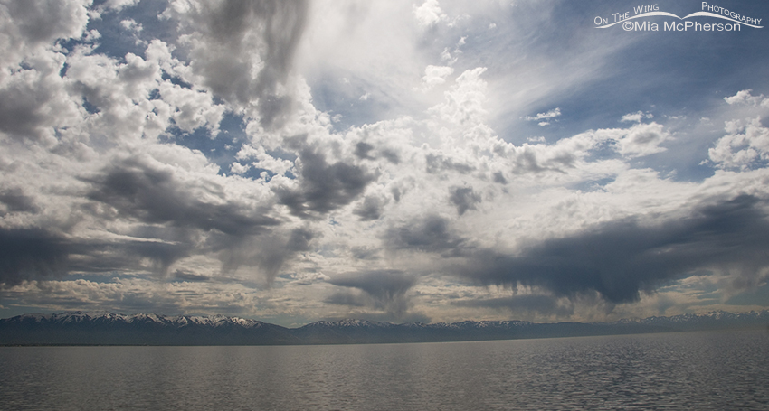 From the causeway after leaving Antelope Island, more virga