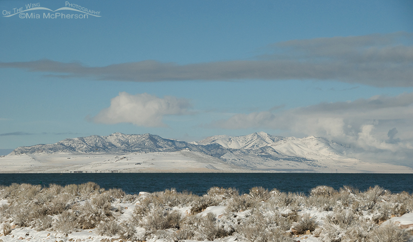Promontory Mountains from Antelope Island