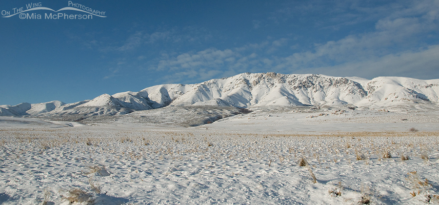 Antelope Island mountains covered in snow
