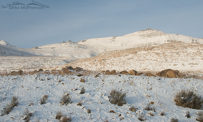 Fresh Snow on Antelope Island