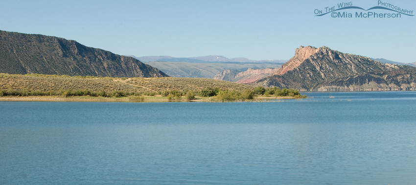 View from the Antelope Flat camp site