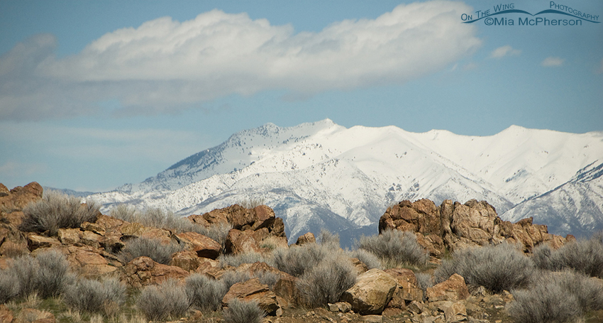 View from Frary Peak parking area across to the Wasatch Mountain Range