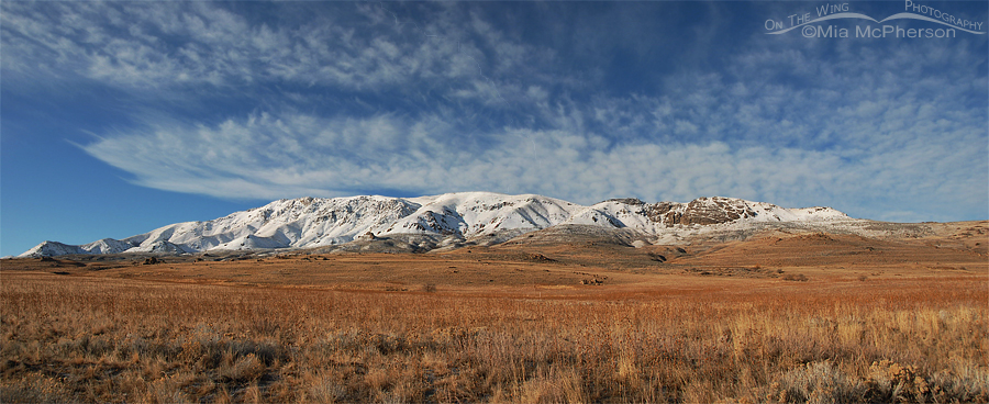 Antelope Island Mountains ~ January 22, 2012