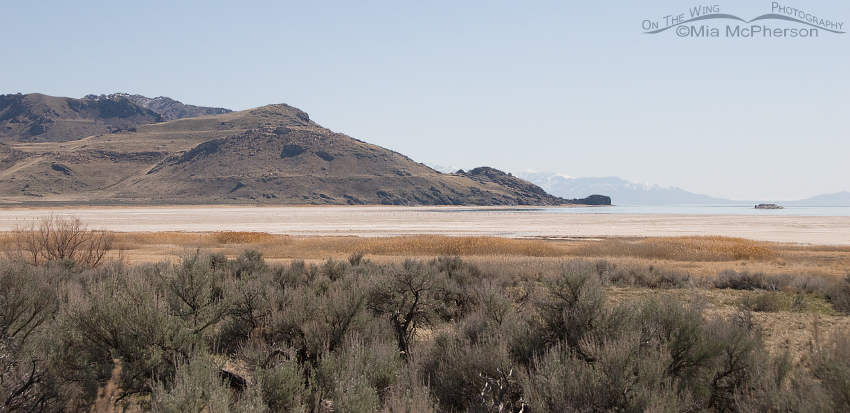 View of White Rock Bay on Antelope Island