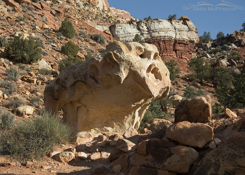 Capitol Reef National Park rock formation