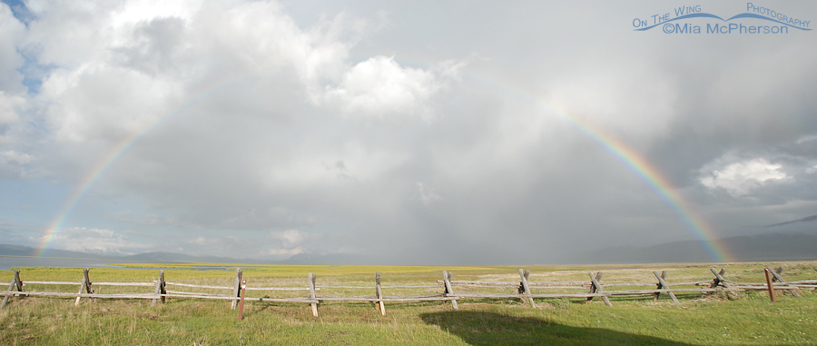 Rainbow over Red Rock Lakes National Wildlife Refuge from the Lower Lake