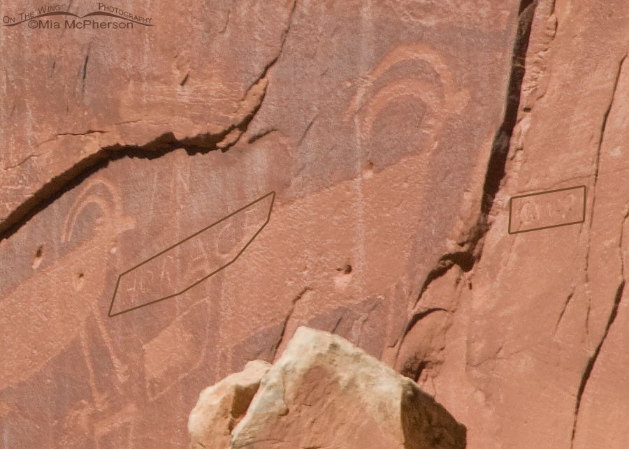 Defacement of the Capitol Reef Sheep Petroglyph