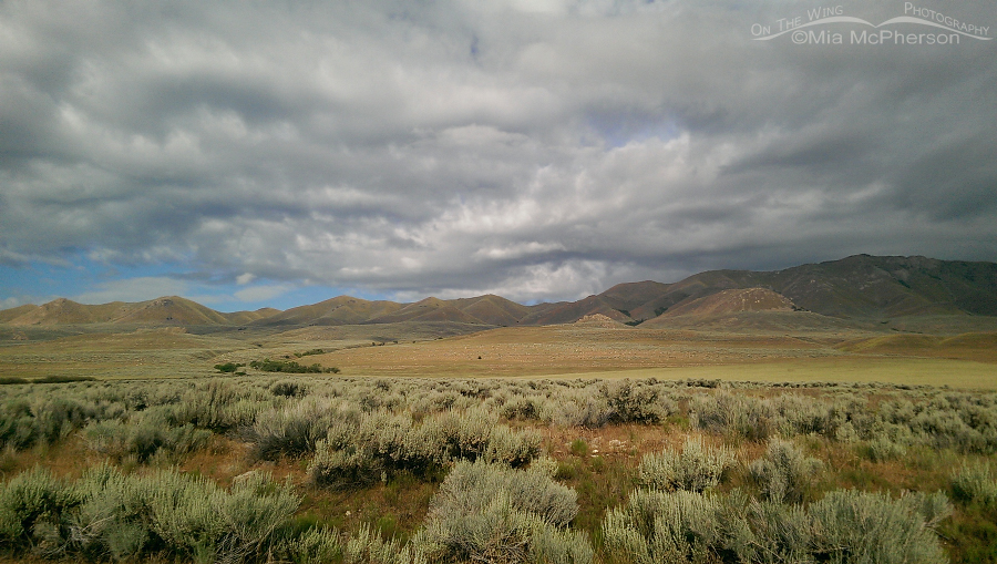 Stormy clouds over Antelope Island