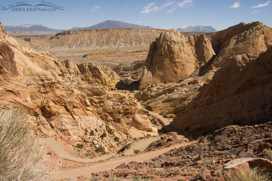 Burr Trail Switchbacks, March 2014