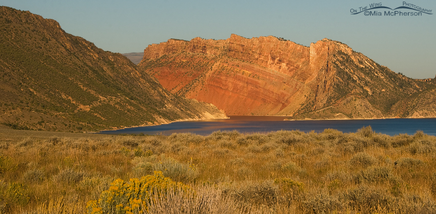 Flaming Gorge in early morning light
