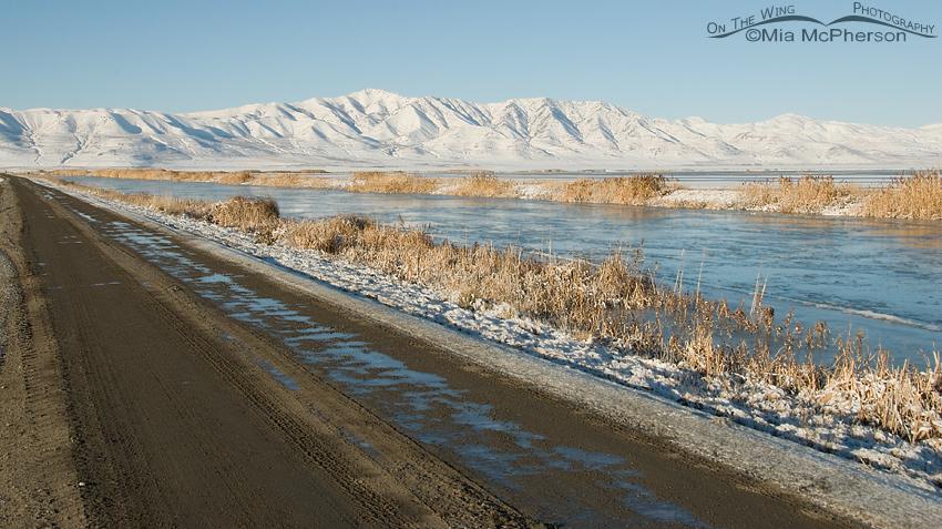 Bear River National Wildlife Refuge