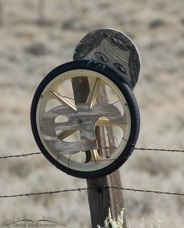 Wheel ER Peek