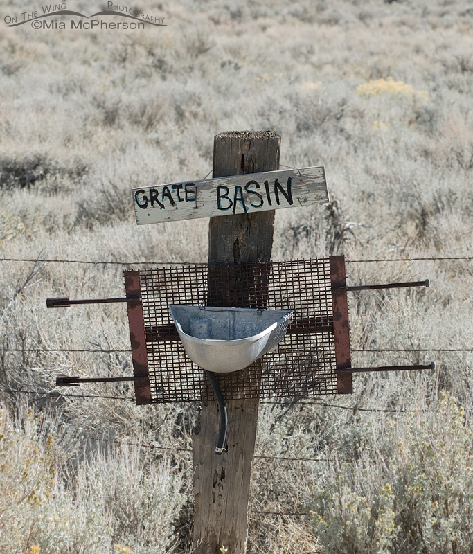 Grate Basin
