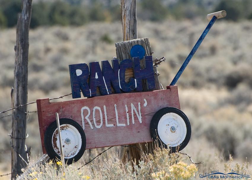 Rollin Ranch