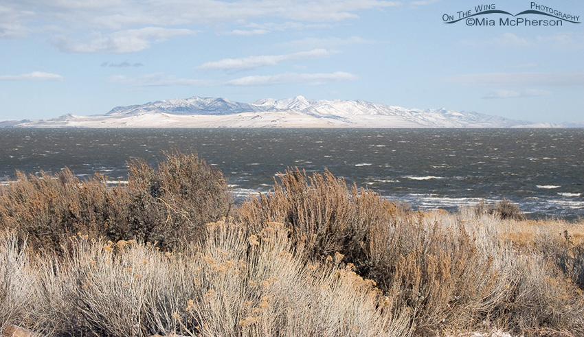 Choppy waters in the Great Salt Lake