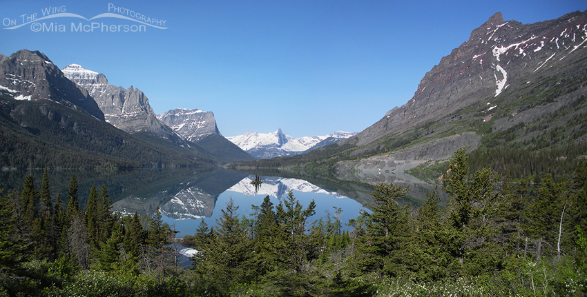 Glacier National Park - The Crown Jewel of Montana
