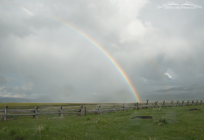 Rainbow and clearing storm at Red Rock Lakes NWR, Montana