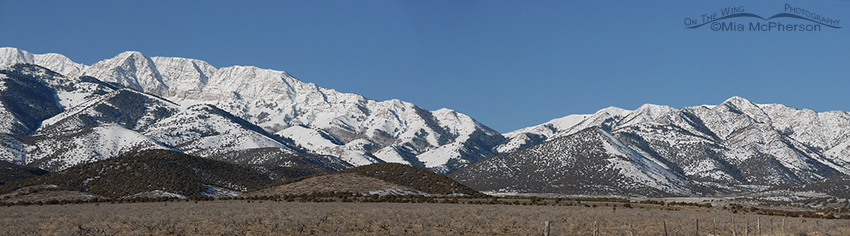 Stansbury Mountain Range Pano