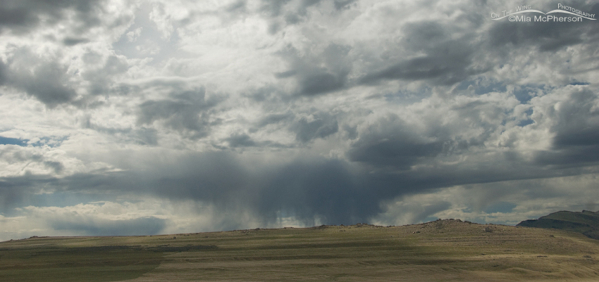 Virga near White Rock Bay7046