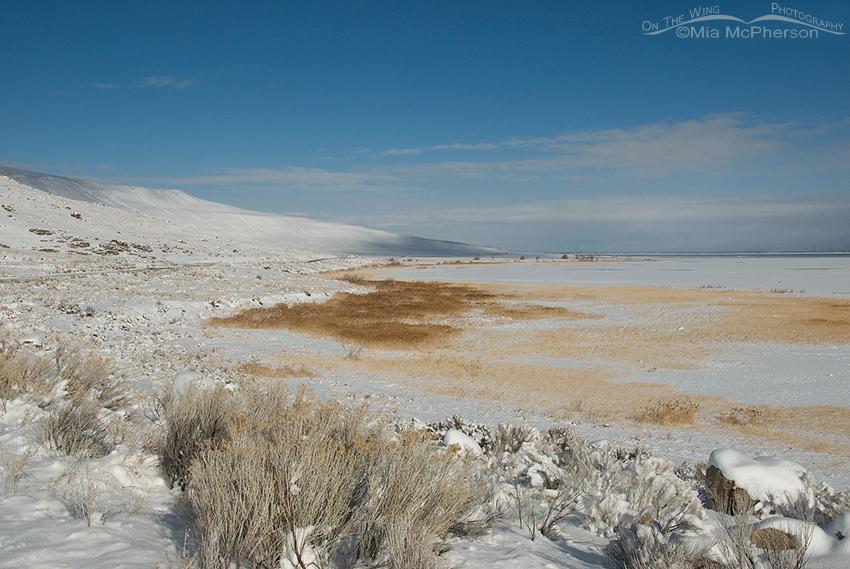 Antelope Island snow