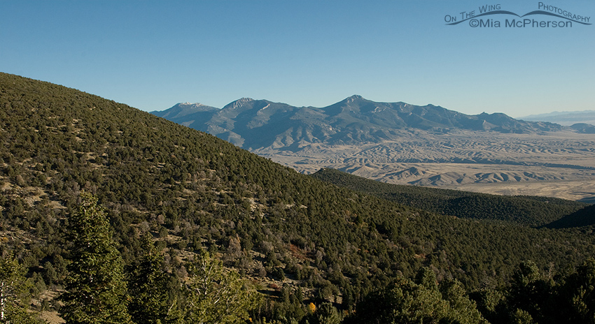 View of Mt. Moriah Wilderness Area in the Humboldt Toiyabe National Forest