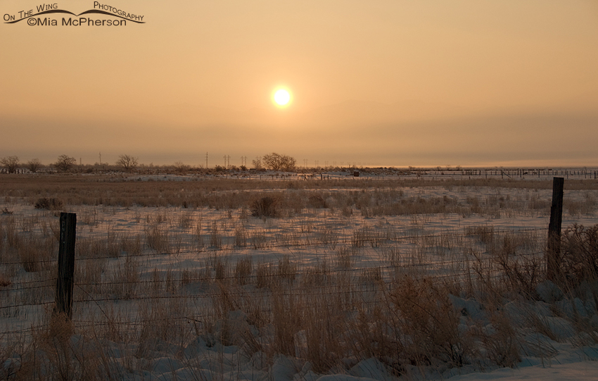 Tooele County - Inversion at sunrise