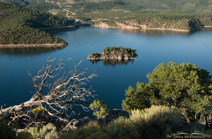 View from above the Flaming Gorge Reservoir