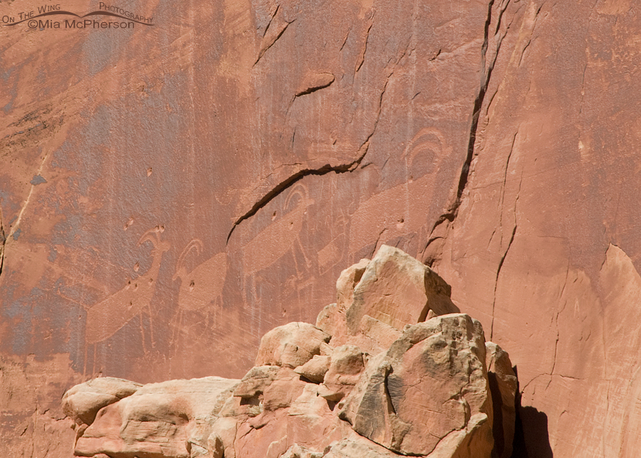 Capitol Reef Sheep Petroglyph