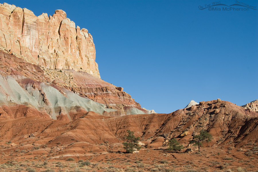 Layers of Time - Capitol Reef National Park