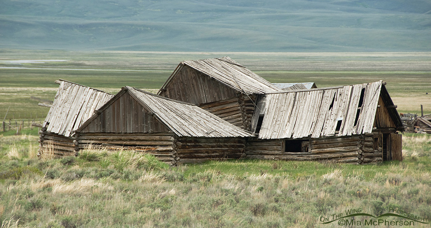 Old Barn on the way to Red Rock Lakes National Wildlife Refuge, Montana