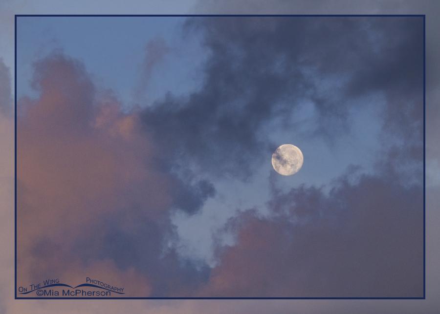 Summer Solstice Moonset