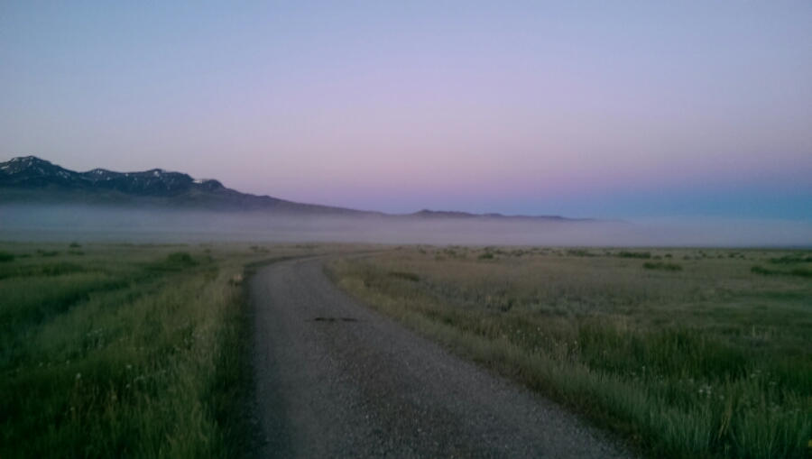 Morning mist and the Centennial Mountains