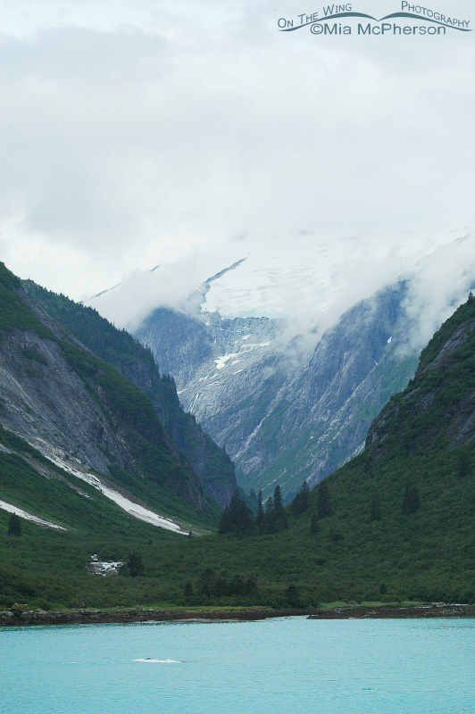 Views of Tracy Arm
