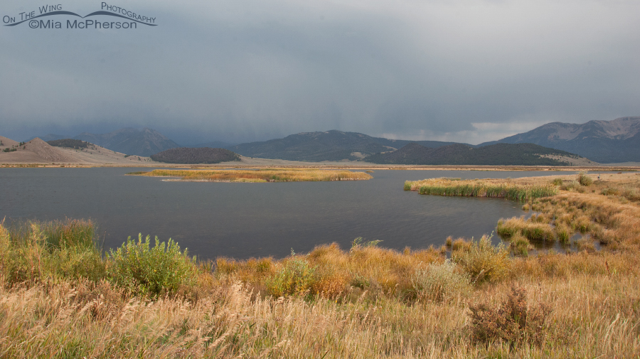 Stormy weather over Wigeon Pond, Red Rock Lakes National Wildlife Refuge