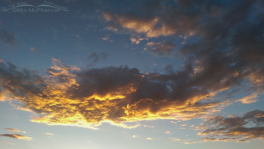 The setting sun on the clouds over Gunlock State Park I